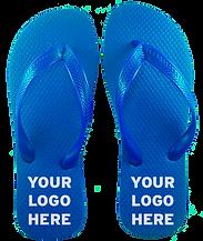 BLUE_FLIPS copy.png