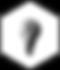 Dark Lab Logo Icon