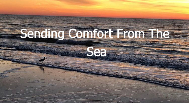 Sending Comfort During This Time