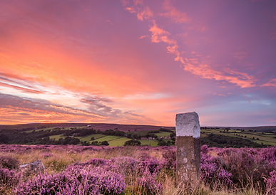 North Yorkshire Moors.png