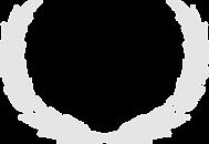 award_logo.png