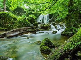 beautiful-cascade-environment-460621.jpg
