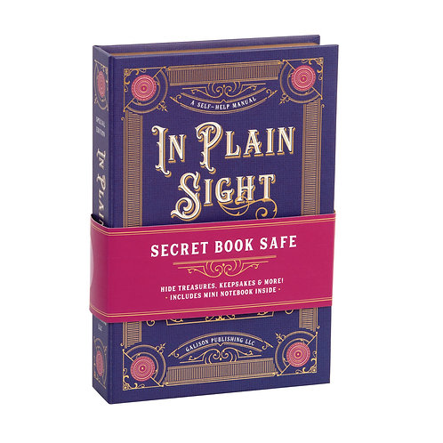 In Plain Sight Book Safe