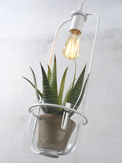 Florence Hanging Light & Plant Holder