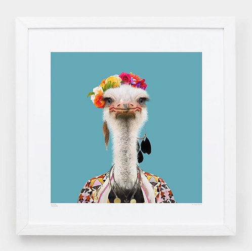 Zoo Portraits: Amburo, the Somali Ostrich
