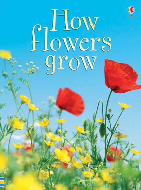 How Flowers Grow, Beginners