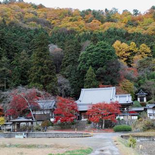 山々の壮大な紅葉