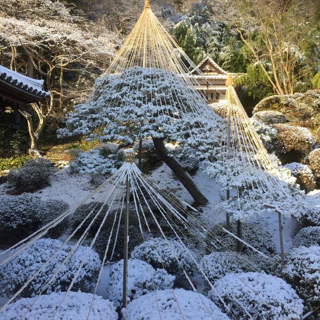 雪つり雪景色