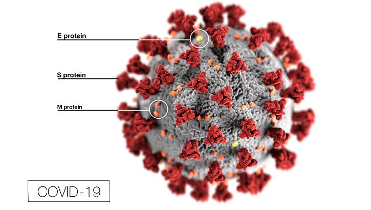 covid-19 pathogen