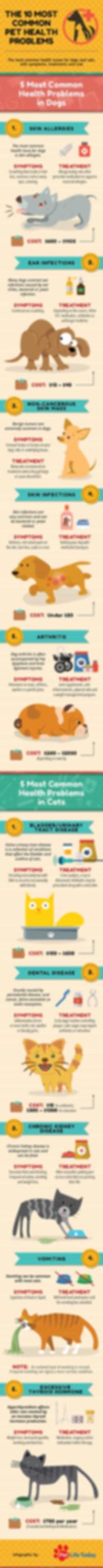 pet-health-problems-infographic.jpg