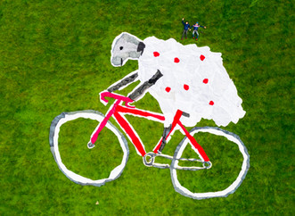 Herdy of the Hills - Tour of Britain 2018