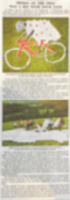 HerdyNewspaper.jpg