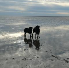 cuxhaven4.JPG