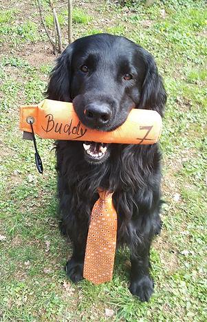 Buddy 7