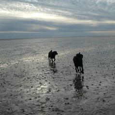 cuxhaven3.JPG