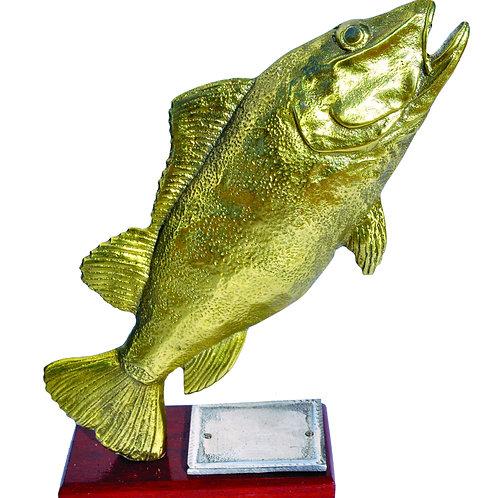 Trofeus para Campeonatos de Pesca