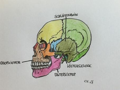 Welche Ursachen hat #Zähneknirschen, #Zähnepressen sowie andere #Bissanomalien ...
