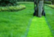cut-grass.png