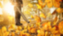 Worker and leaf blower.jpg