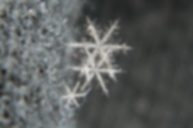 ice crystals, dendrites
