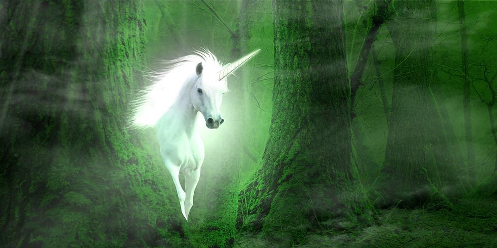 Lezing De Eenhoorns - Magische wezens