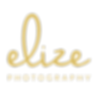 Elize New logo GOLD.png