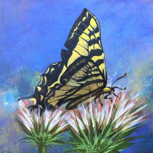 Swallowtail-Judith Dauncey