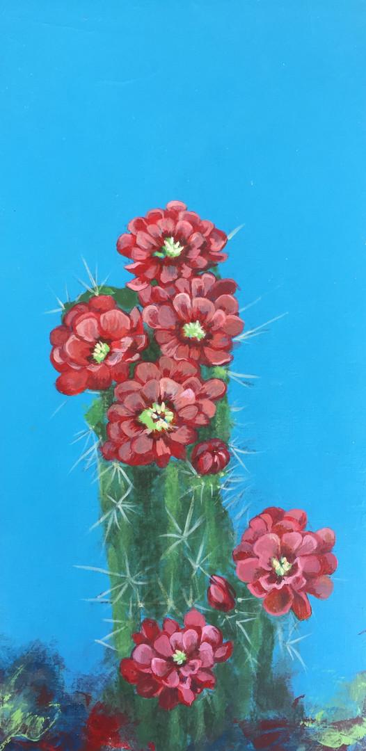 Red Cactus- Judith Dauncey