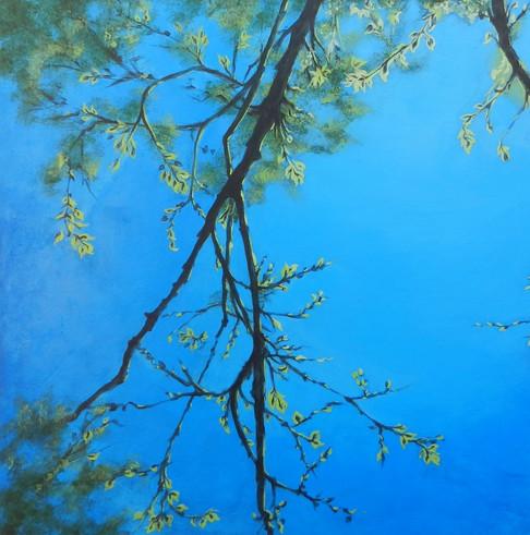 Filtered Light 1- Judith Dauncey