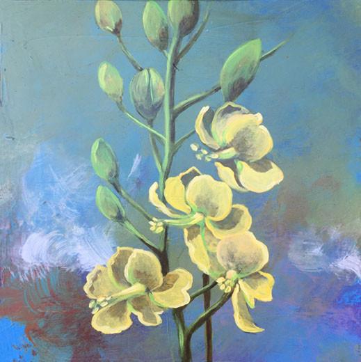 Yellow- Judith Dauncey