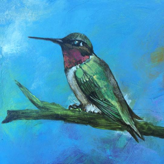 Ruby-throated Hummingbird- Judith Dauncey