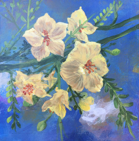 Mesquite Bloom- Judith Dauncey