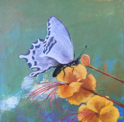 Bird of Paradise- Judith Dauncey