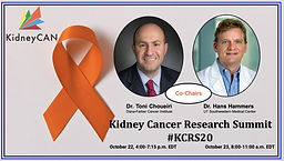 Kidney Cancer Research Summit #KCRS20