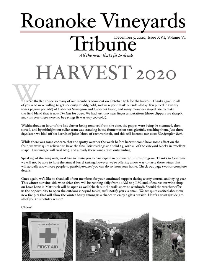 Roanoke Trib pg 1.jpg