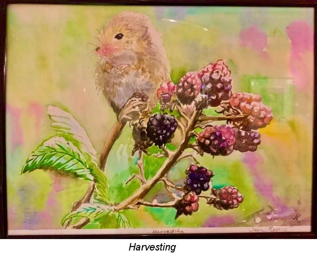 Harvesting.jpeg