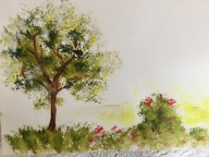 Flowers and Trees