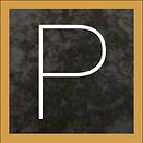 PetalSnap logo.png