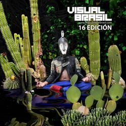 Visual Brasil Festival