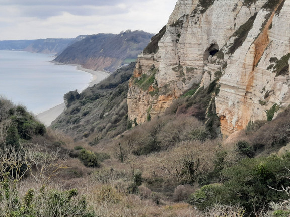 East Devon Coastal: Branscombe to Beer and back (partly circular) - 6.5 miles - O/S Landranger 192