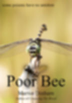 Book cover for Poor Bee