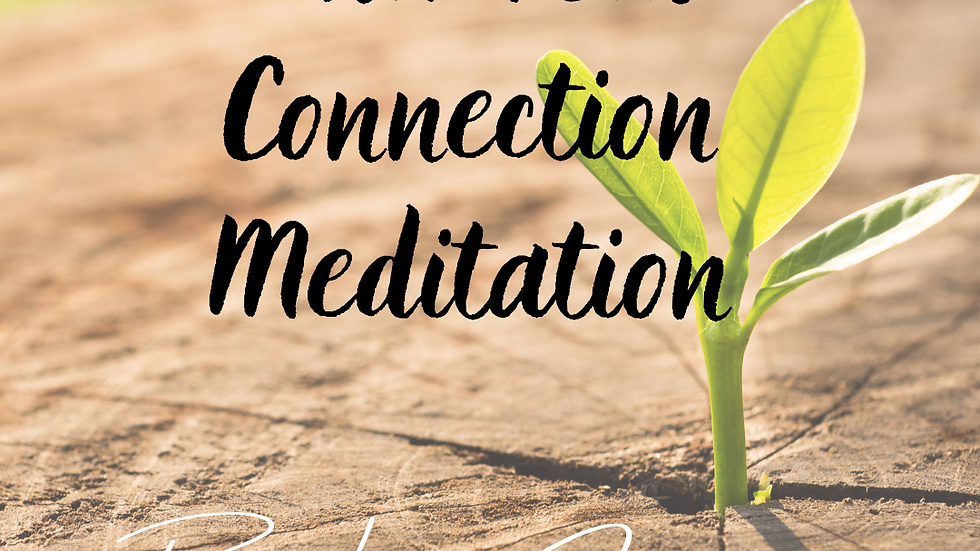 Universal Connection Meditation