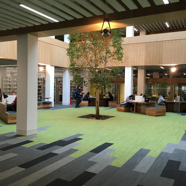 Library Refurbishment, Lancaster University