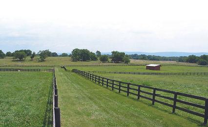 farmpict1.jpg