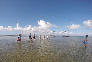 Estuary trip.JPG