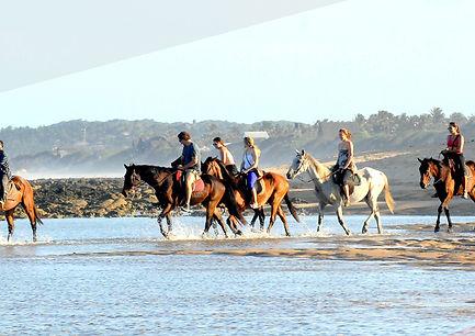 Horseriding(CULTURE)2.jpg