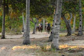 Horseriding activity.JPG