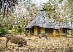 Gorongosa Lodge