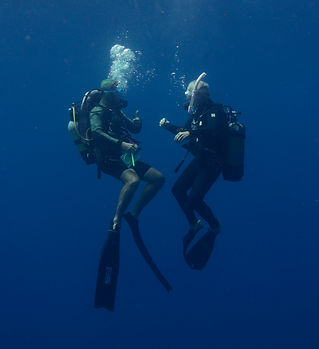 about diving