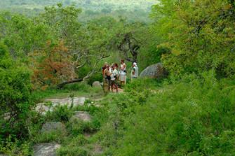 A walking safari to monuments.jpg